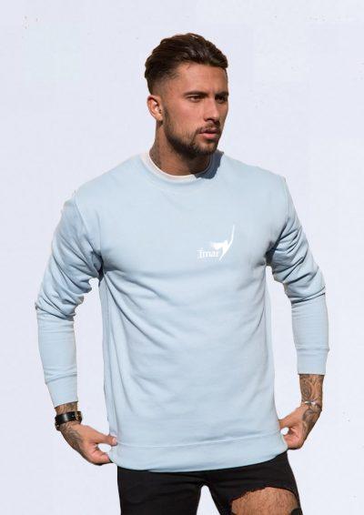 Blue Sweatshirt Male